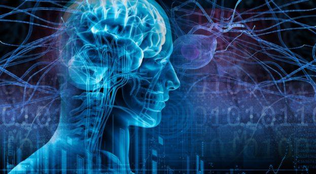 Epilepsi (Sara) Nedir? Belirtileri, Nedenleri ve Tedavisi