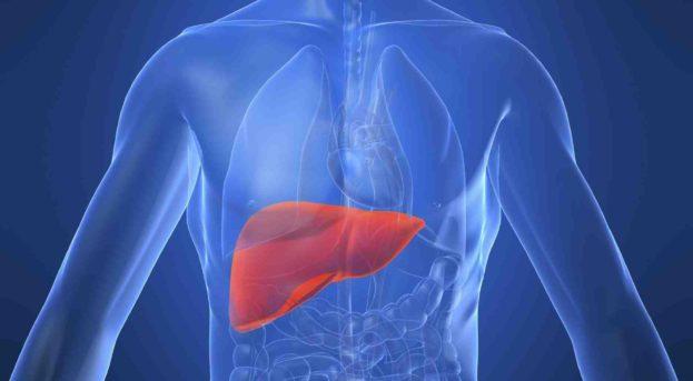 Hepatit B Nedir? Belirtileri ve Tedavisi