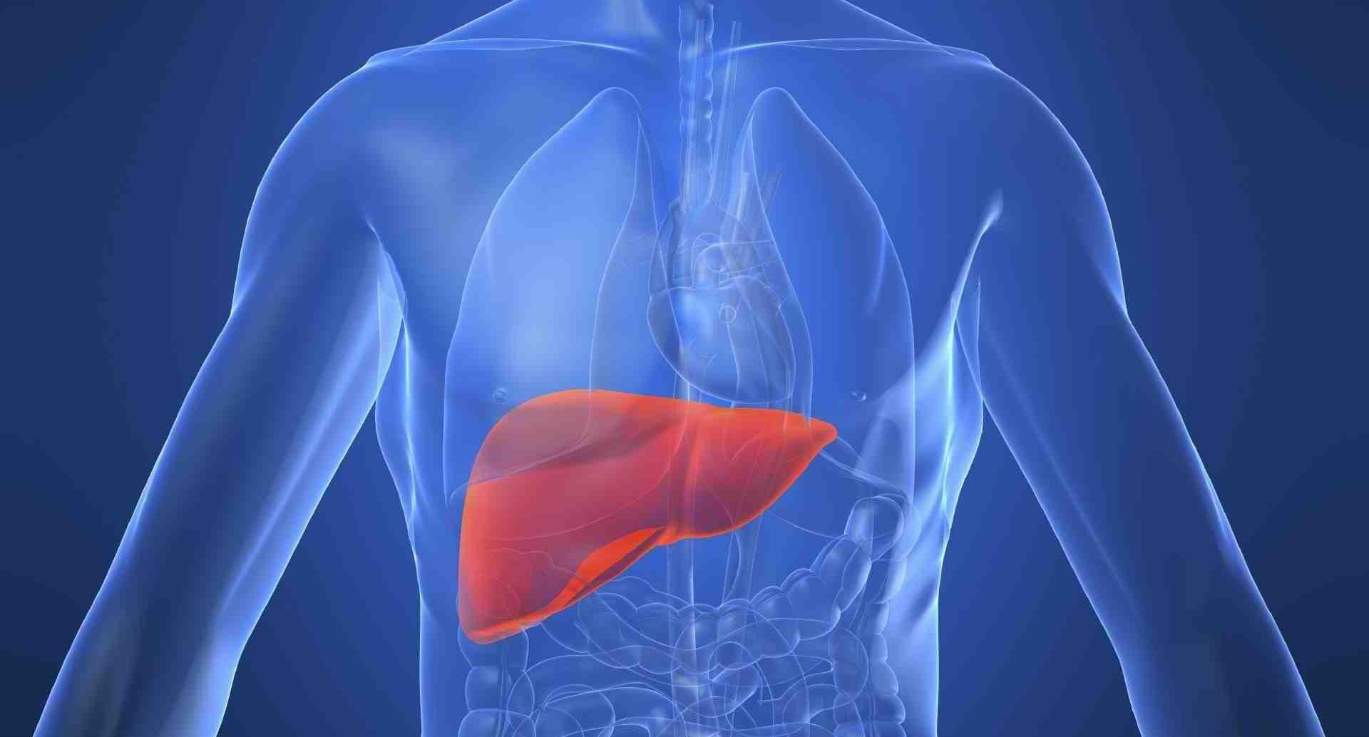 Hepatit B virüsü karaciğer nakline neden oluyor